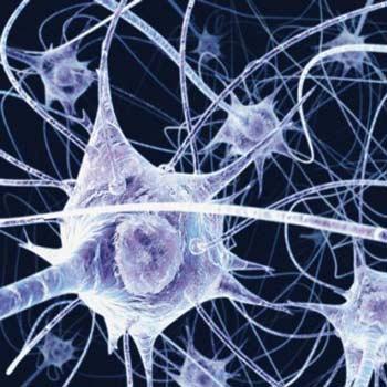 مقاله ترجمه شده بازشناسی شماره شاسی با OCR با شبکه عصبی