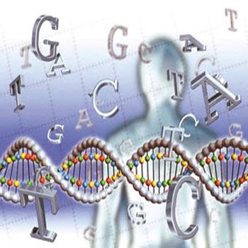 پاورپوینت الگوی فرا ابتکاری ژنتیک