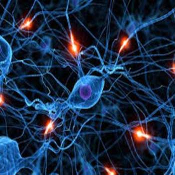 ترجمه تشخیص کاراکتر با استفاده از شبکه عصبی