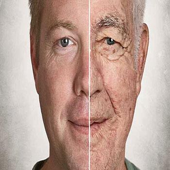 سن بیولوژیکی انسان
