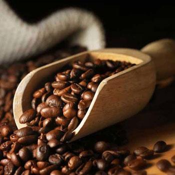 ترجمه تصاویر دیجیتال برای نظارت بر رنگ دانه قهوه در طول بو دادن در یک بستر جهنده