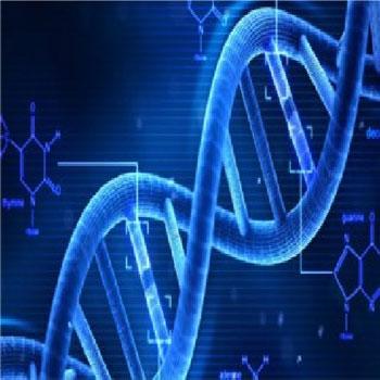 ترجمه الگوریتم ژنتیکی پویا برای طراحی قوی تثبیت کننده سیستم قدرت چند دستگاه