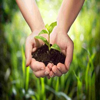 تحقیق اقتصاد کشاورزی
