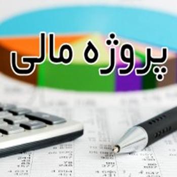 تحقیق پروژه مالی