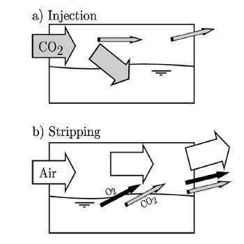 شبیه سازی مقاله انتقال جرم دی اکسید کربن و تبدیل به زیست توده (بیومس) با متلب