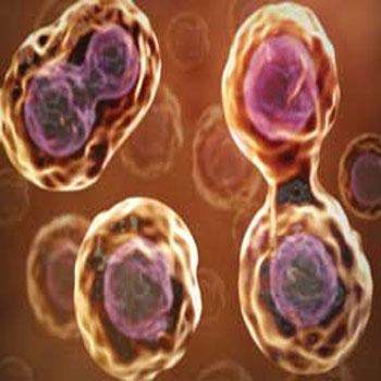 تحقیقتقسیم سلولی