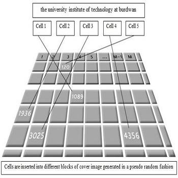 شبیه سازی مقاله پنهان سازی متن در تصویر با ترکيب الگوريتم های تبديل کسينوسي گسسته (DCT) و رمزنگاری RSA با متلب