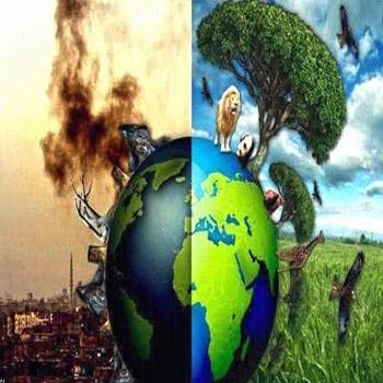 تحقیق حقوق بشر و محیط زیست