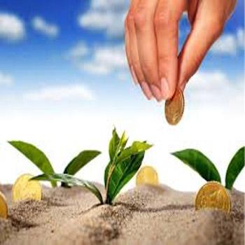 تحقیق مدیریت سرمایهگذاری