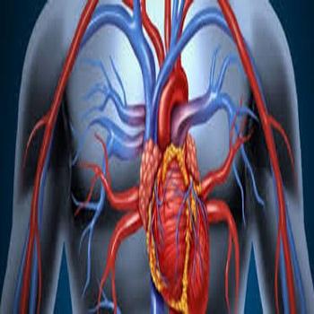 ترجمه تاثیر استرس اکسیداتیو بر سیستم قلبی عروقی در پاسخ به جاذبه