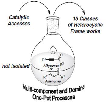 ترجمه واکنش های چند جزئی در شیمی هتروسیکل