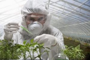مقاله ترجمه شده مهندسی کشاورزی