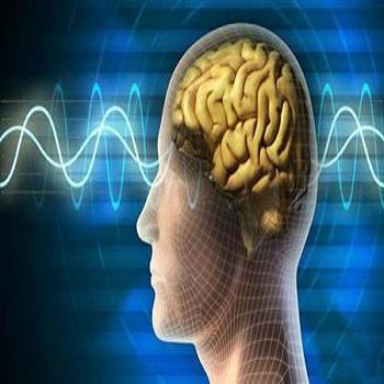 پروژه شبیه سازی فشرده سازی پیشرفته سیگنال EEG در بیمار آلزایمری با متلب