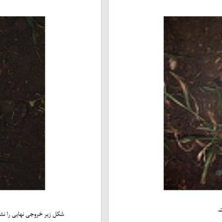 پروژه شبیه سازی ترکیب غیرخطی داده های تصویر مرکبات میوه چند طیفی با محتوای اطلاعات با متلب