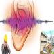 تحقیق نقش ساخت و ساز در ایجاد آلودگی صوتی
