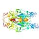 پاورپوینت گیرنده های فاکتور های رشد عصبی و مکانیسم داخل سلولی آن ها