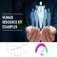تحقیق تاثير استراتژی های منابع انسانی بر عملکرد مالی