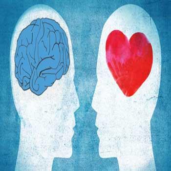 تحقیق و پاورپوینت هوش عاطفی